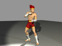 Anime Thai Boxer
