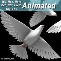 white dove bird 3d model