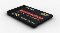 data storage card 3d max
