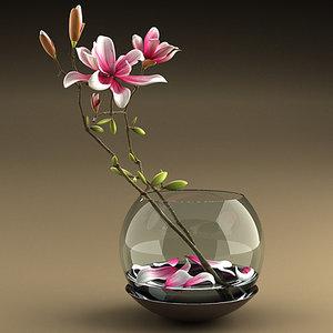 magnolia flowers vase 3d 3ds