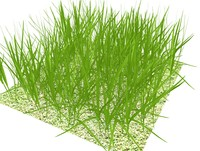 grass large patch.ZIP