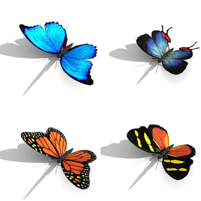 3d obj butterfly item