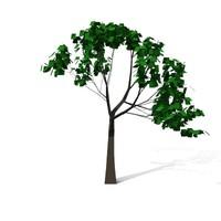 tree plants 3d max
