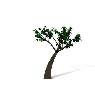3d tree plants