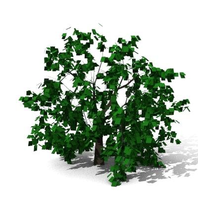 3d tree plants model
