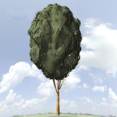 3ds max tree architectural visuals