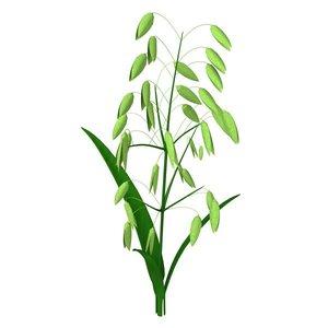 oat 3d dxf