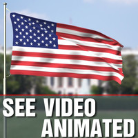 realistic flag animation 3d model