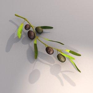olives branch max