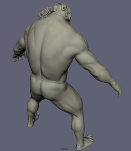 caracter anatomic ma