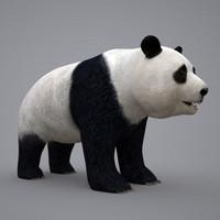 3d panda bamboo bear