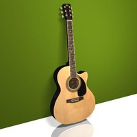 acoustic electric guitar 3d max