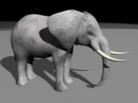 elephant animation 3d 3ds