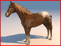 max horse 01