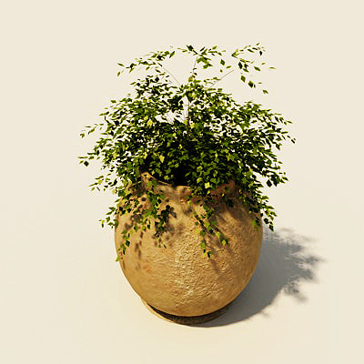 vase house plant 3d model