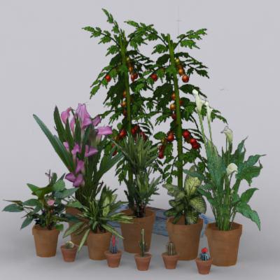 3ds greenhouse plants flower