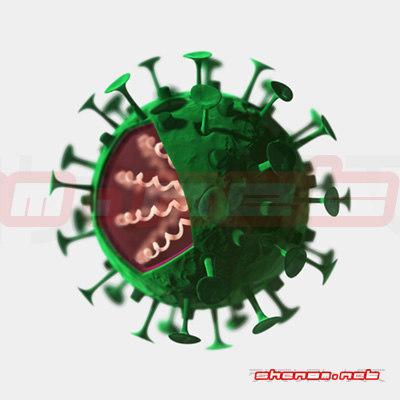 3d : virus model