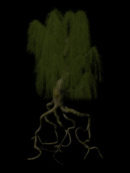 willow tree 3d lwo
