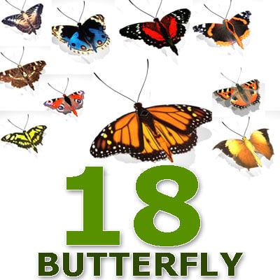 butterflies 18 3d model