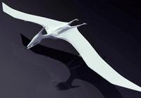 Pteranodon.rar