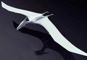3d model pteranodon dinosaur
