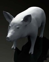3ds max pig sow