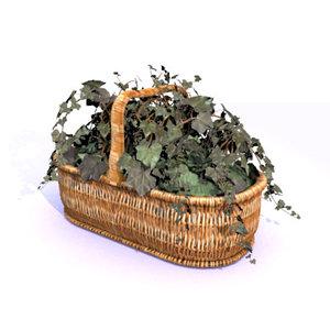 english ivy basket 3d 3ds
