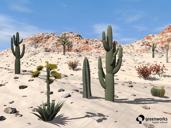 usa plants xfrogplants southwest pz3