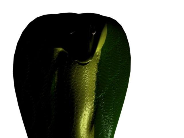 kobra snake 3d model