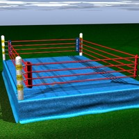 boxing ring lwo