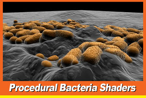 3d bacteria cell