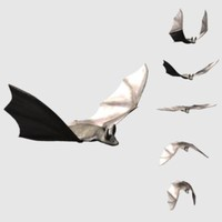 3D_Bat.zip