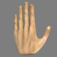 hand_lwo.zip