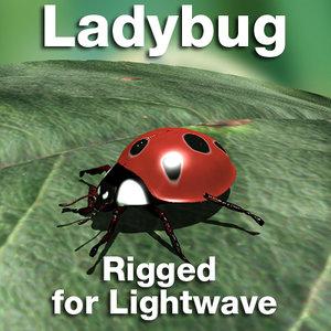 ladybug lady lightwave lwo