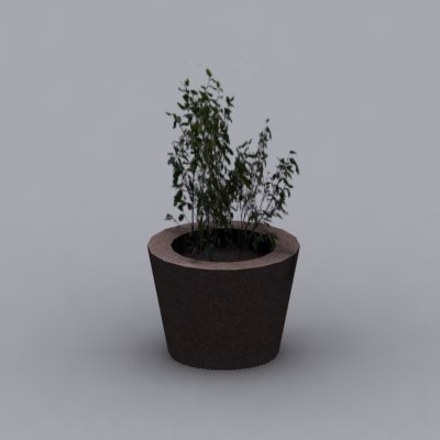 plant potted 3d max