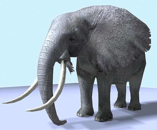elephant africa 3d max