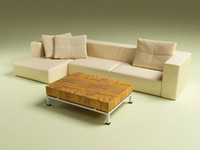 Corner couch with coffee table