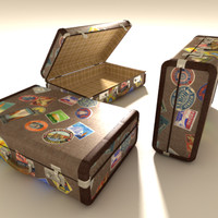 well travelled suitcase/luggage