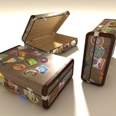 maya travelled suitcase luggage