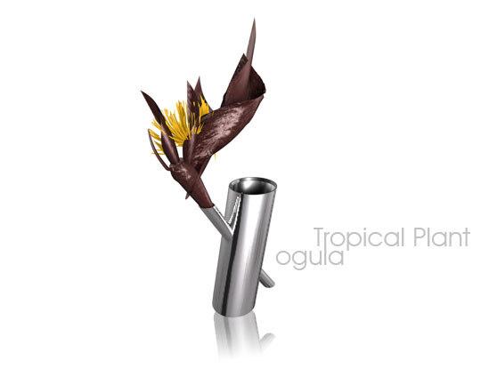 3d 3ds tropical plant flower