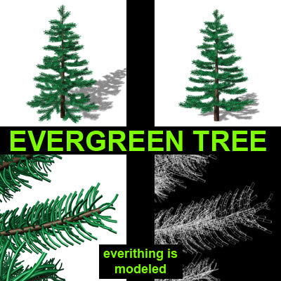 3ds evergreen tree