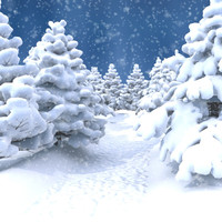 3d winter conifer forest snow model