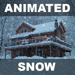 lwo snow scene