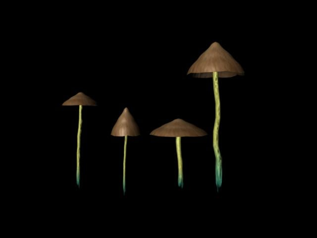 mushrooms 6 3d ma
