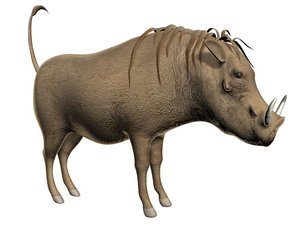 warthog 3d max