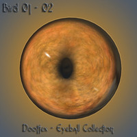 bird eye 3d max