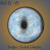 3d bird eye