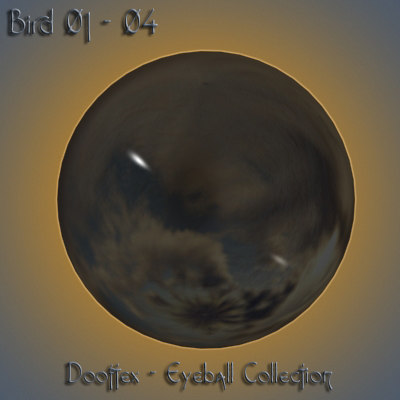 3d bird eye model