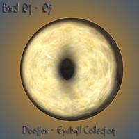 bird eye max