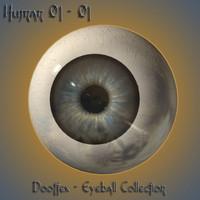 max human eye